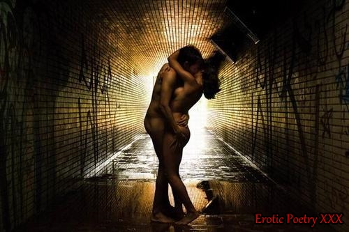 Erotic Poetry XXX excerpt from When The Apocalypse Comes by Sierra DeMulder